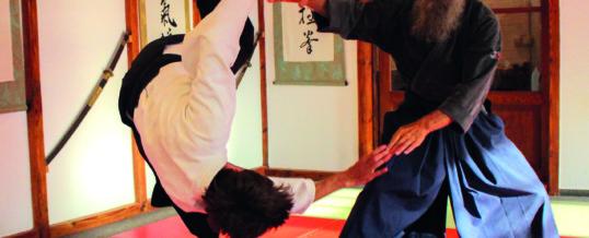 Aikido – einmal anders betrachtet