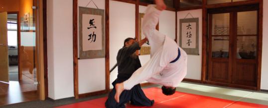 klasse Aikido-Seminar