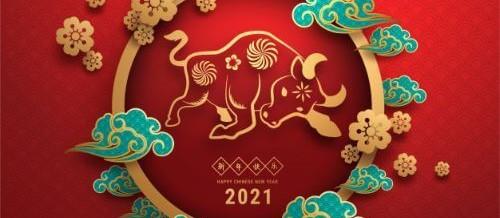 2021 – Das Jahr des Büffels
